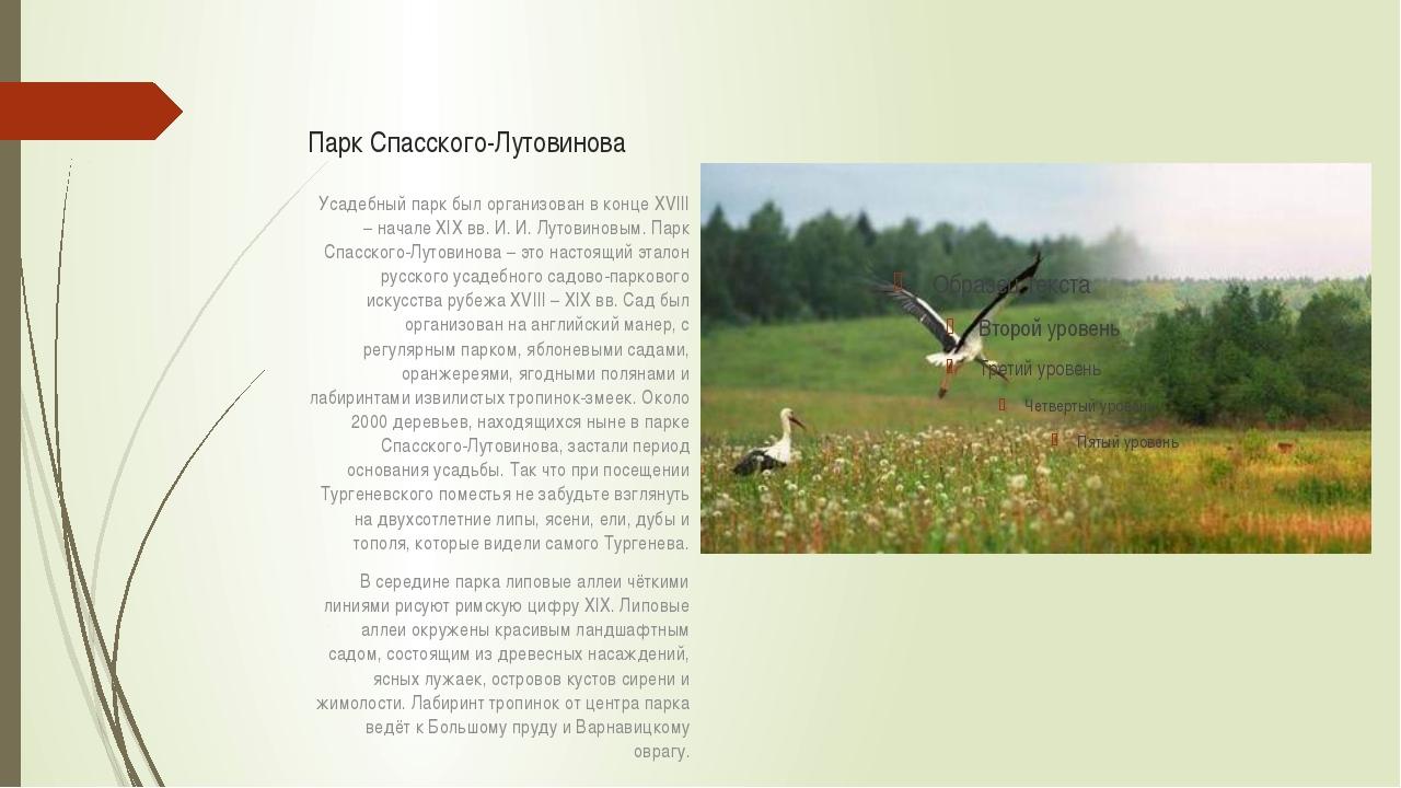 Парк Спасского-Лутовинова Усадебный парк был организован в конце XVIII – нача...