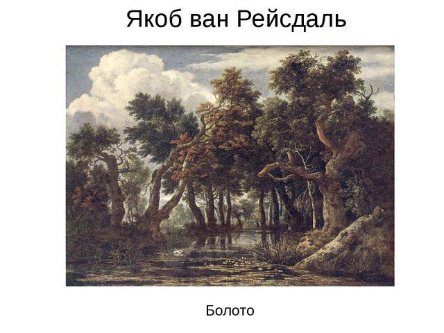 Якоб ван Рейсдаль Якоб ван Рейсдаль Болото