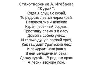 """Стихотворение А. Игебаева """"Курай"""". Когда я слушаю курай, То радость льется че"""