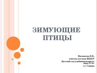 ЗИМУЮЩИЕ ПТИЦЫ Мясникова Е.Н., учитель-логопед МБДОУ «Детский сад комбинирова