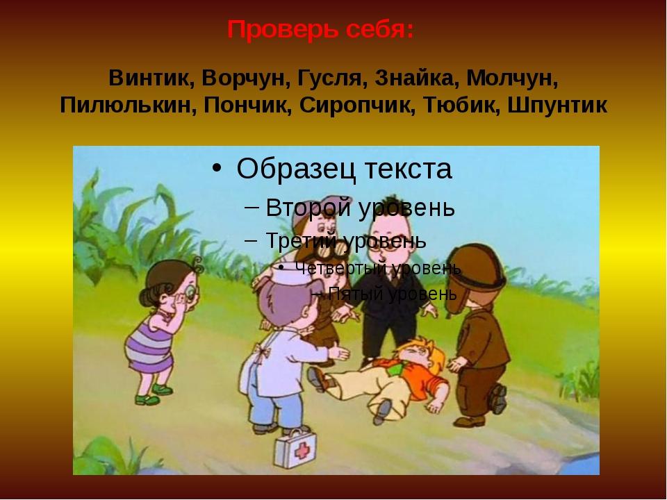Винтик, Ворчун, Гусля, Знайка, Молчун, Пилюлькин, Пончик, Сиропчик, Тюбик, Шп...