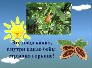 Это плод какао, внутри какао бобы страшно горькие!