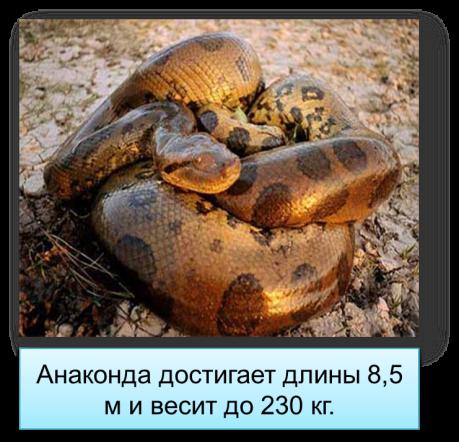 hello_html_a5c8e80.png
