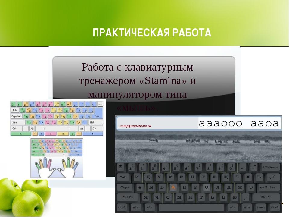 ПРАКТИЧЕСКАЯ РАБОТА Работа с клавиатурным тренажером «Stamina» и манипуляторо...