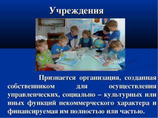Учреждения Признается организация, созданная собственником для осуществления