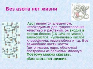 Без азота нет жизни Азот является элементом, необходимым для существования жи