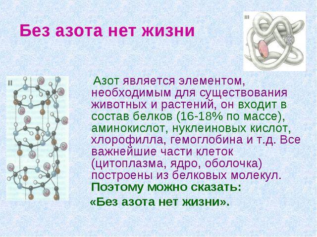 Без азота нет жизни Азот является элементом, необходимым для существования жи...