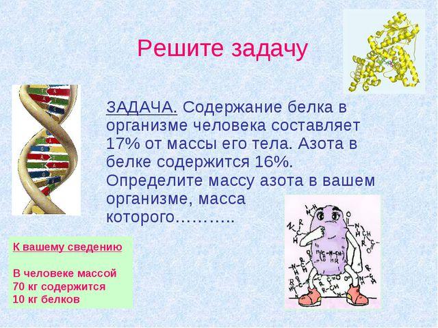 ЗАДАЧА. Содержание белка в организме человека составляет 17% от массы его тел...