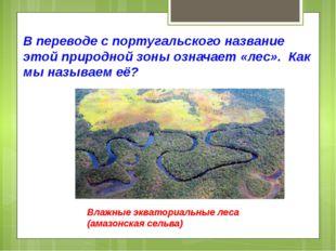 В переводе с португальского название этой природной зоны означает «лес». Как