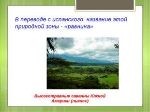 В переводе с испанского название этой природной зоны - «равнина» Высокотравны
