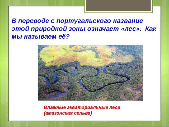 В переводе с португальского название этой природной зоны означает «лес». Как...