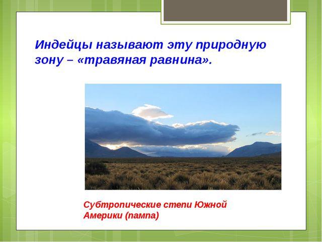 Индейцы называют эту природную зону – «травяная равнина». Субтропические степ...