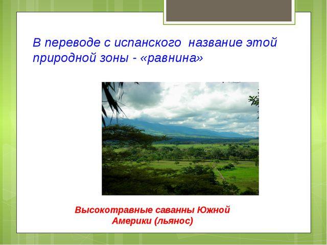 В переводе с испанского название этой природной зоны - «равнина» Высокотравны...