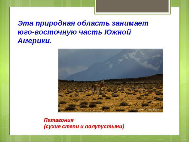 Эта природная область занимает юго-восточную часть Южной Америки. Патагония (...