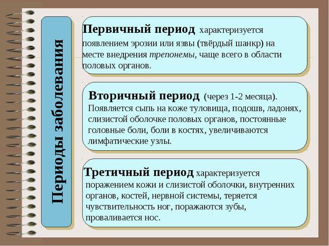 Периоды заболевания Первичный период характеризуется появлением эрозии или яз...
