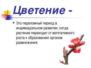 Цветение - Это переломный период в индивидуальном развитии, когда растение пе