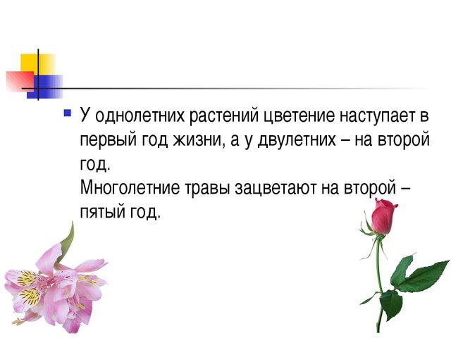 У однолетних растений цветение наступает в первый год жизни, а у двулетних –...