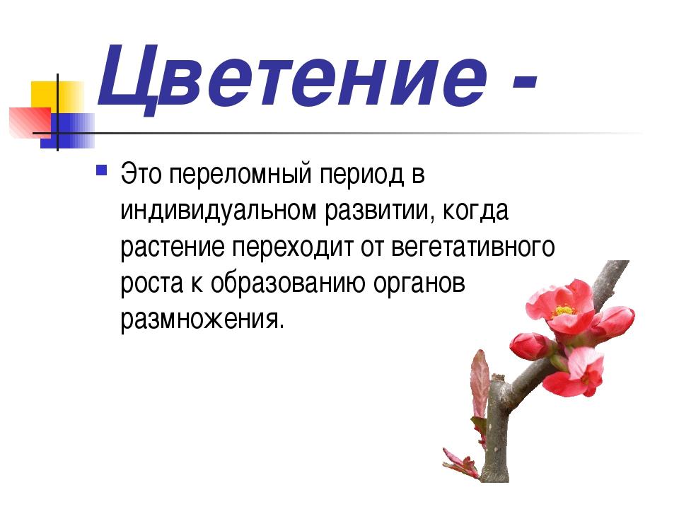 Цветение - Это переломный период в индивидуальном развитии, когда растение пе...