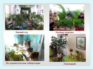 Зимний сад Исследовательская лаборатория Лимонарий Зеленые огороды