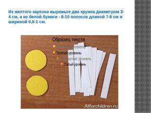 Из желтого картона вырежьте два кружка диаметром 3-4 см, а из белой бумаги -
