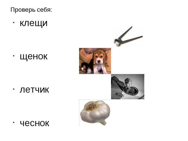 Проверь себя: клещи щенок летчик чеснок