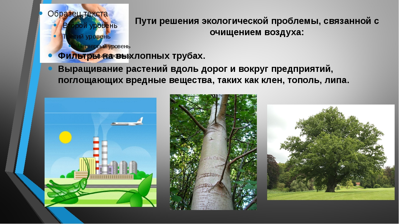 Картинка решение экологических проблем