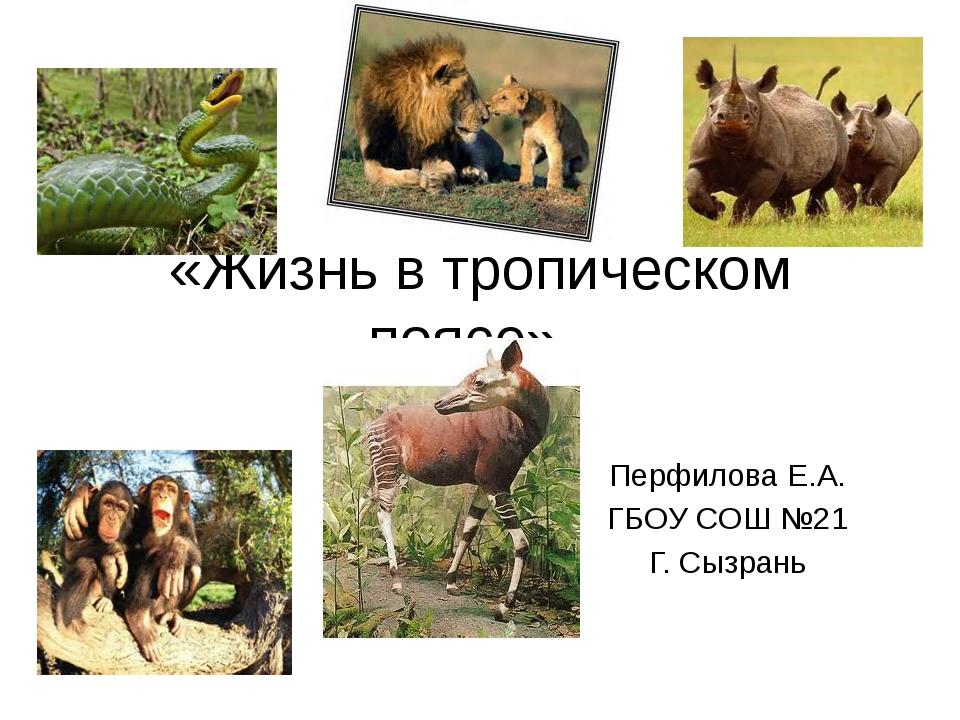 «Жизнь в тропическом поясе». Перфилова Е.А. ГБОУ СОШ №21 Г. Сызрань