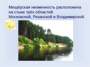 Мещёрская низменность расположена на стыке трёх областей: Московской, Рязанск