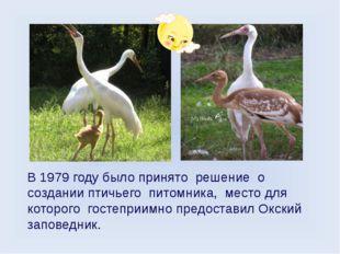 В 1979 году было принято решение о создании птичьего питомника, место для кот