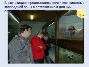 В экспозициях представлены почти все животные заповедной зоны в естественном