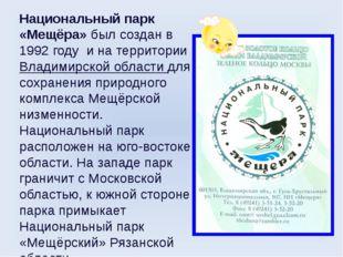 Национальный парк «Мещёра»был создан в 1992 году и на территории Владимирско