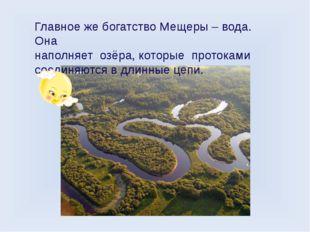 Главное же богатство Мещеры – вода. Она наполняет озёра, которые протоками со
