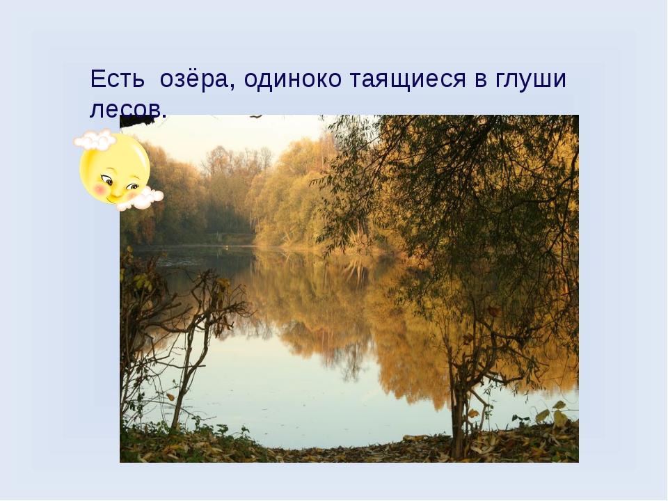 Есть озёра, одиноко таящиеся в глуши лесов.