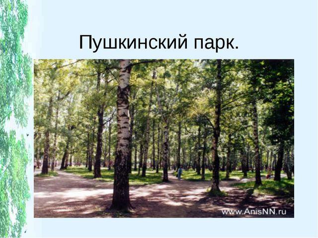 Пушкинский парк.