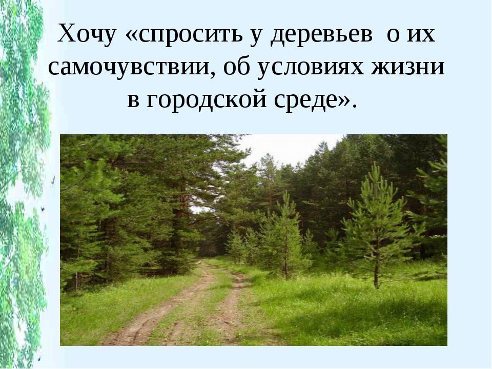 Хочу «спросить у деревьев о их самочувствии, об условиях жизни в городской ср...