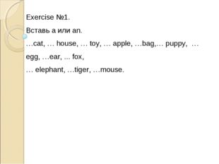 Exercise №1. Вставь a или an. …cat, … house, … toy, … apple, …bag,… puppy, …