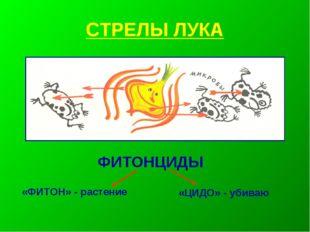 СТРЕЛЫ ЛУКА ФИТОНЦИДЫ «ФИТОН» - растение «ЦИДО» - убиваю