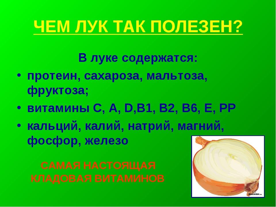 ЧЕМ ЛУК ТАК ПОЛЕЗЕН? В луке содержатся: протеин, сахароза, мальтоза, фруктоза...
