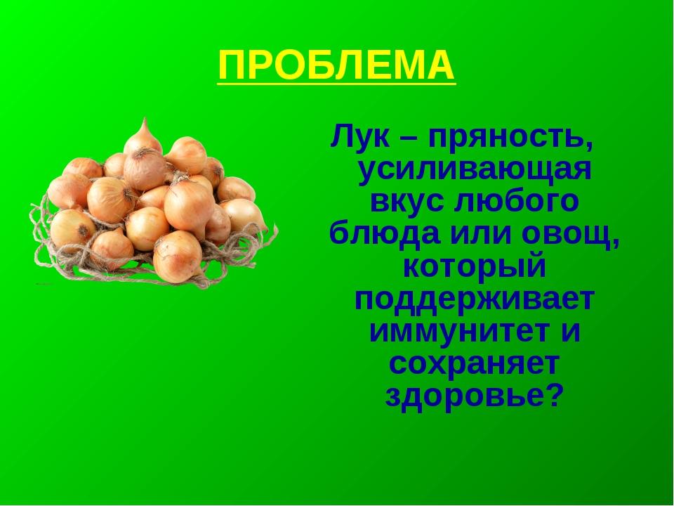 ПРОБЛЕМА Лук – пряность, усиливающая вкус любого блюда или овощ, который подд...