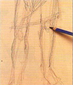 Пошаговый урок карандашного рисунка - шаг 5