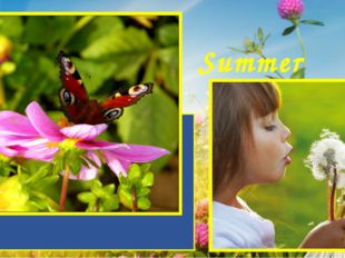 Summer is a wonderful time of the year. It is loved both adults and children.