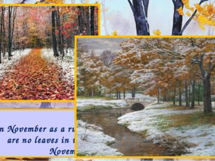 In November as a rule the weather becomes cold. There are no leaves in the tr
