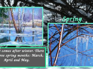 Spring Spring comes after winter. There are three spring months: March, April