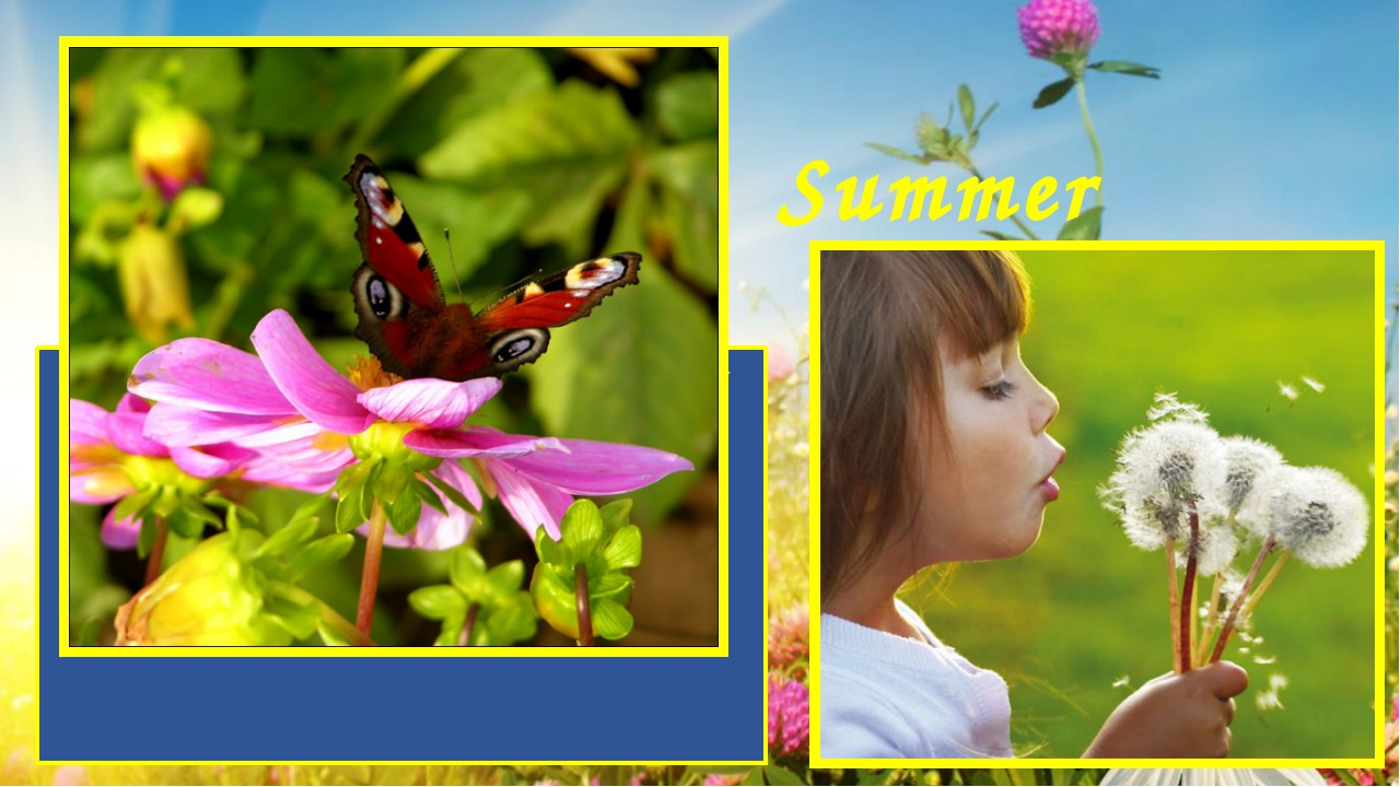 Summer is a wonderful time of the year. It is loved both adults and children....