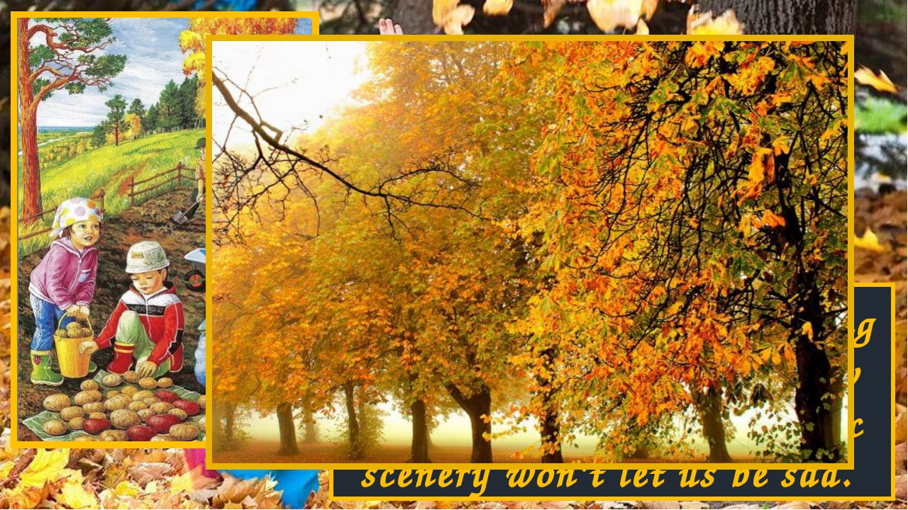 The weather at the beginning of Autumn is warm. Yellow leaves fall and this m...