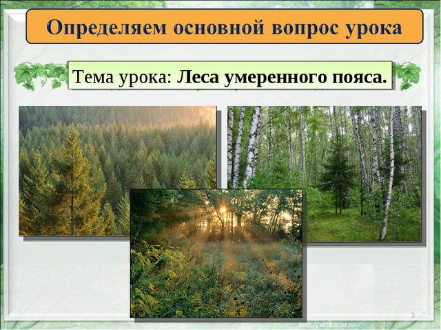 * Тема урока: Леса умеренного пояса.
