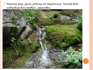 Берегите реки, ручьи, родники от загрязнения. Чистая вода необходима всем жив