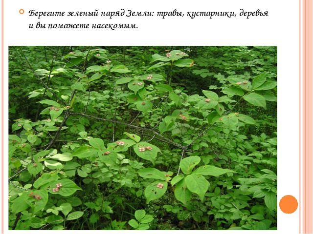 Берегите зеленый наряд Земли: травы, кустарники, деревья и вы поможете насеко...
