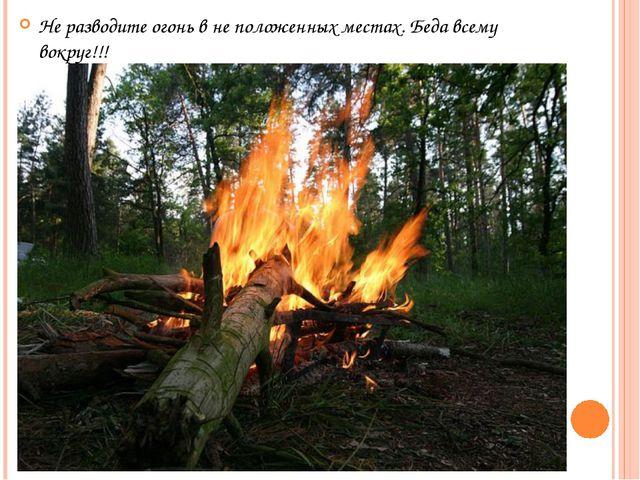 Не разводите огонь в не положенных местах. Беда всему вокруг!!!