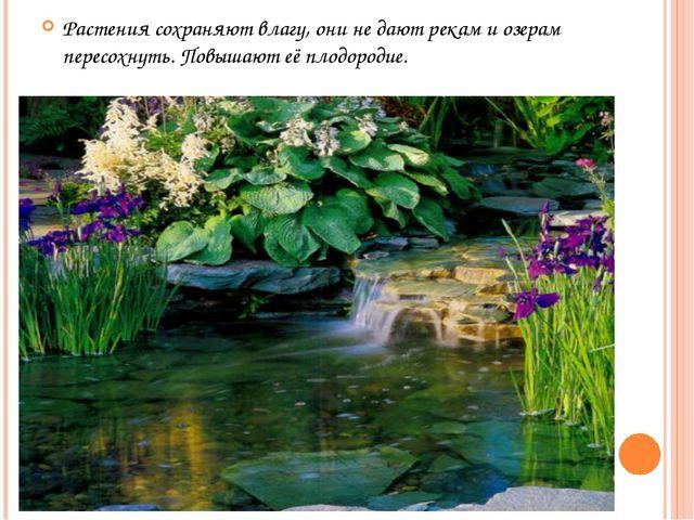 Растения сохраняют влагу, они не дают рекам и озерам пересохнуть. Повышают её...